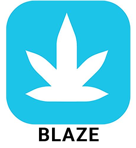 BLAZE company logo